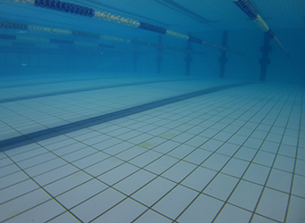 swimming pool tiles inspected by diver