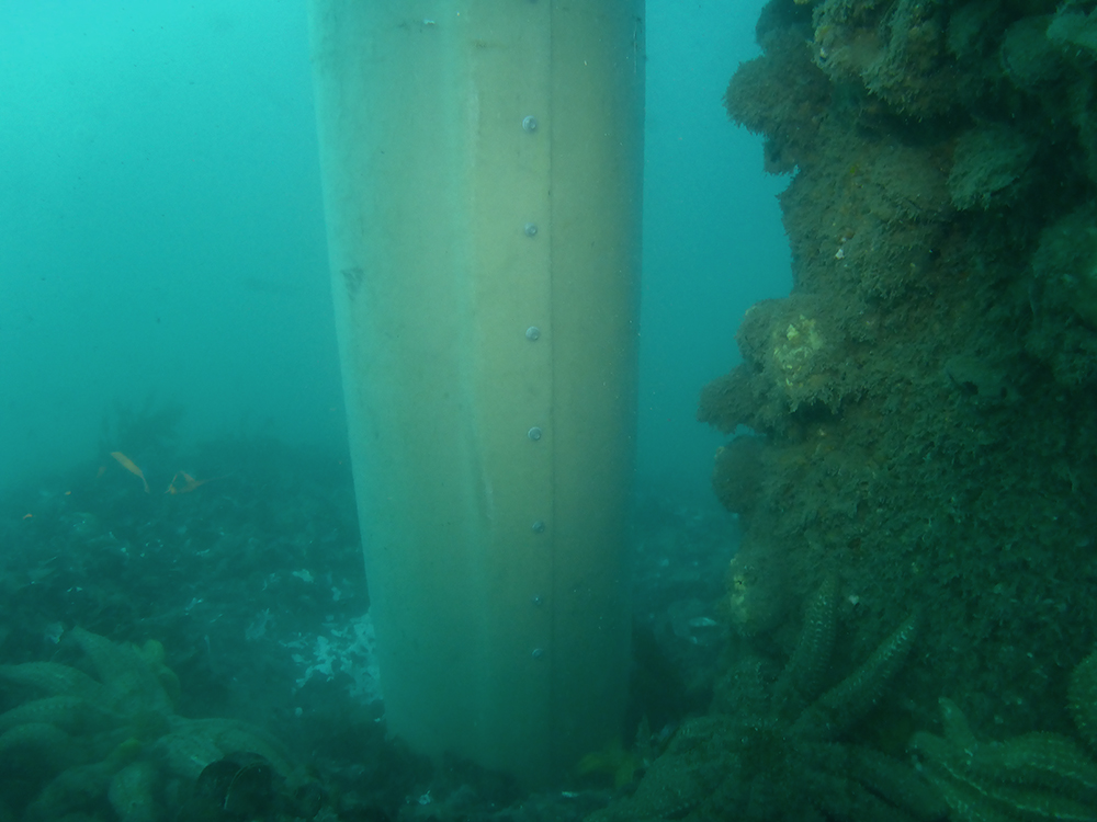 Fawkner Beacon Pile in seabed underwater by PDS