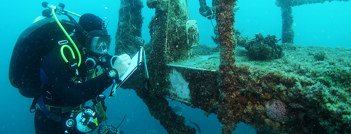Structural integrity assessment on HMAS Hobart