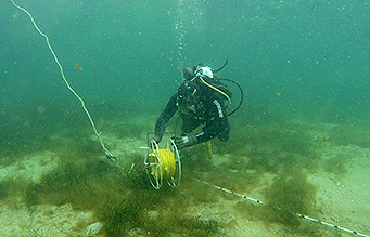 Commercial Diver with measuring equipment