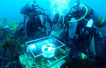 Divers installing a logger