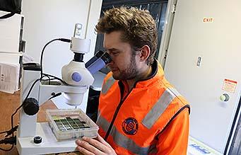 Marine scientist with microscope