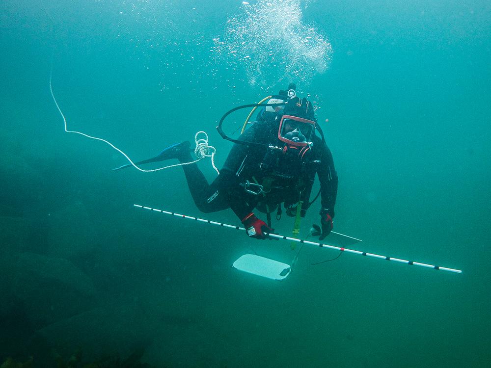 COmmercial Diver at HMAS Penguin