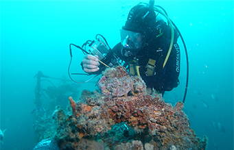 Diver at reef performing non destructive testing task