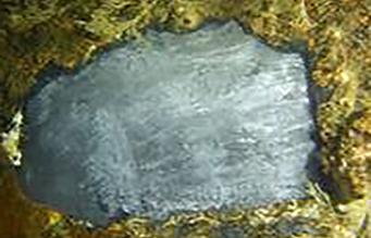 Exposed marine pile surface