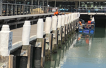 Pier being surveyed