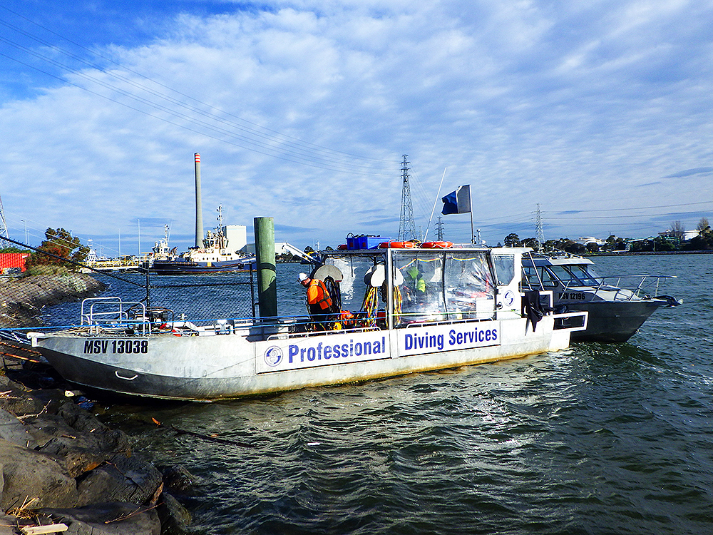 PDS Dive support vessel Pro Diver
