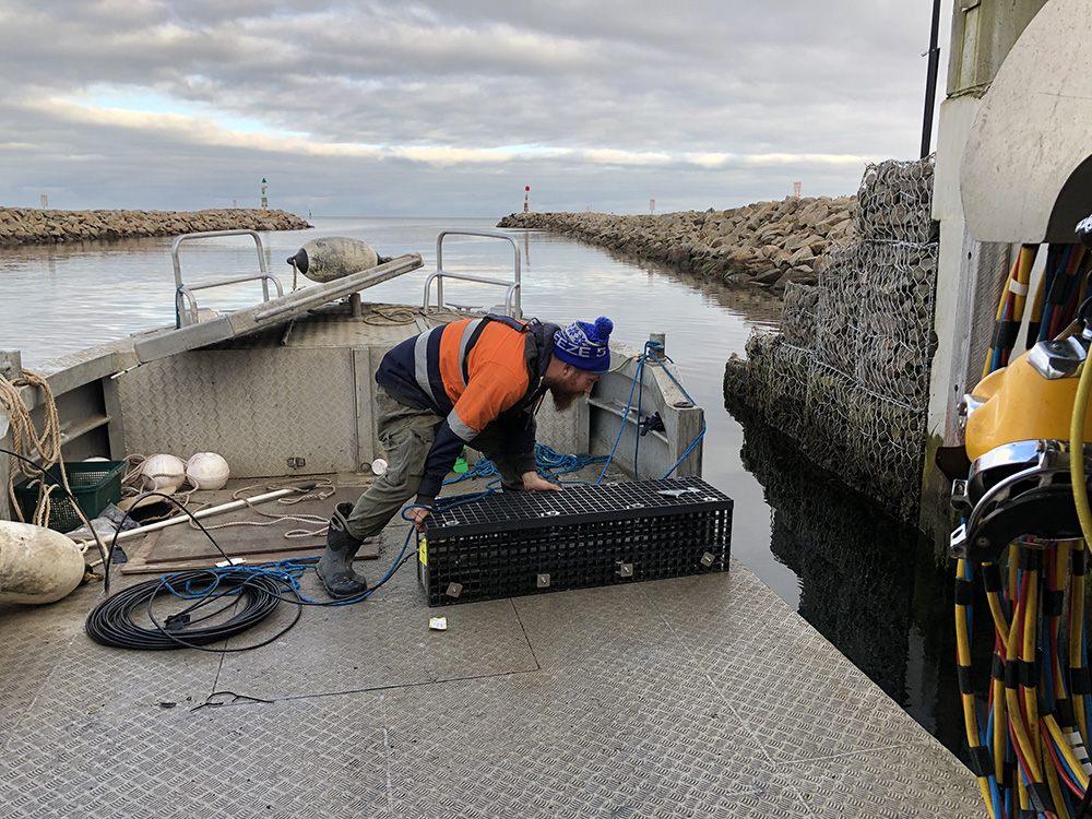 Commercial diver at Martha Cove